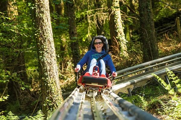 Fforest Coaster Ride at Zip World
