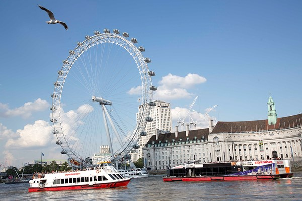 River Red Rover Thames Sightseeing Pass for Two
