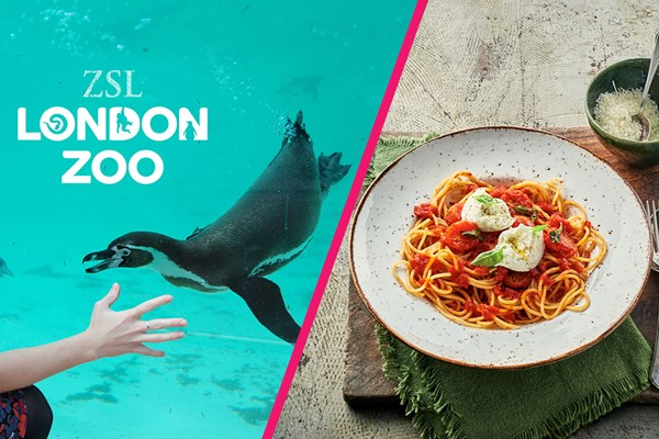 ZSL London Zoo Entry and Three Course Meal at Zizzi for Two