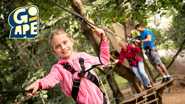 Tree Top Adventure at Go Ape for One Adult and One Child