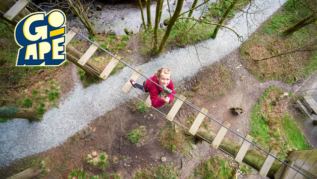 Junior Tree Top Adventure at Go Ape for Two