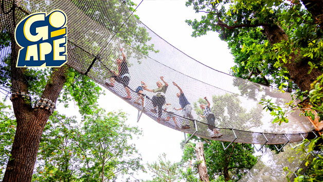 Nets Kingdom Experience at Go Ape for One Adult and One Child