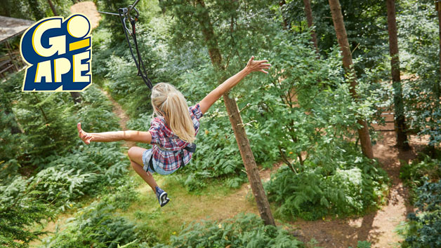 Tree Top Challenge at Go Ape for One Adult