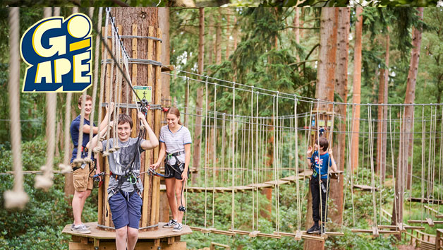 Treetop Adventure Plus at Go Ape for Two