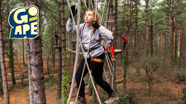 Treetop Adventure Plus at Go Ape for One