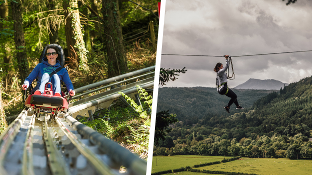 Fforest Coaster and Zip Safari 2 for One Person at Zip World