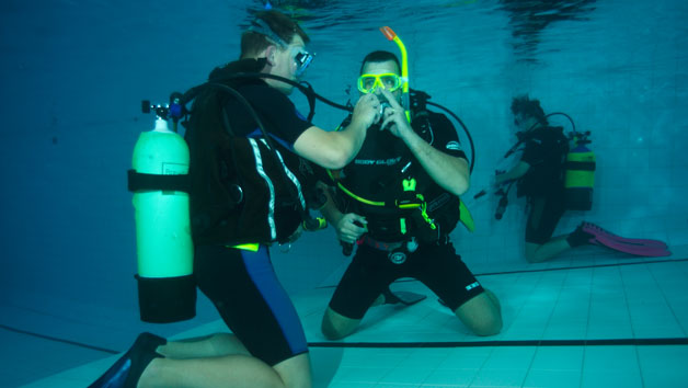 Discover Scuba Diving for Two People with Bolton Area Divers