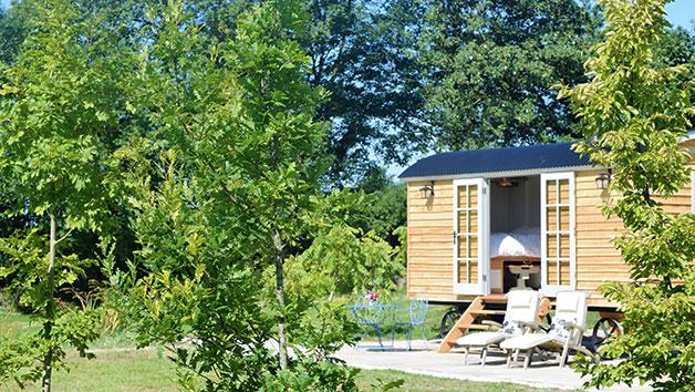 Two Night Shepherd's Hut Break for Two in Somerset
