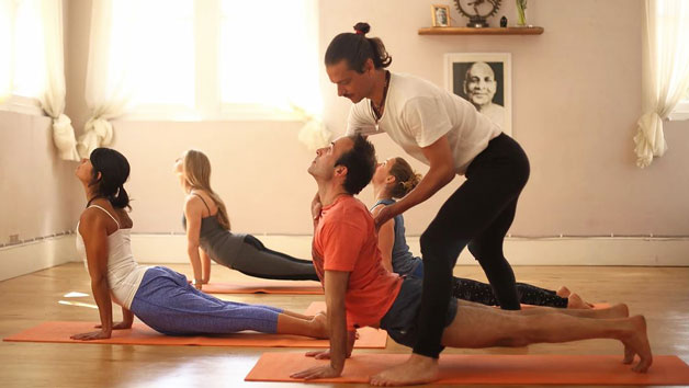 Yoga Day Retreat for Two at Yoga Tree of Life