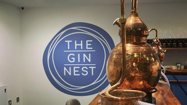 Gin Making Experience for Two at The Gin Nest in Torquay