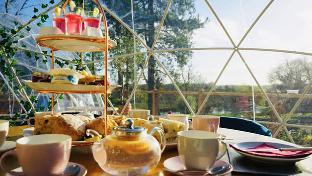 Gin Afternoon Tea at The Old Barn at Wadenhoe for Two