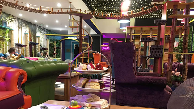 Afternoon Tea at Kitty Café for Two