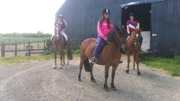 Horseriding Experience for Two at Plum Pudding Equestrian Centre