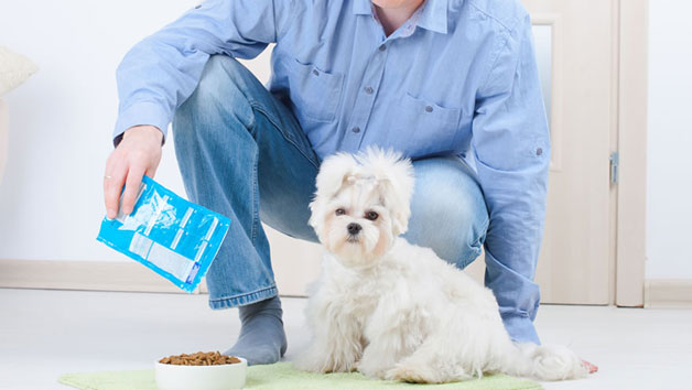 Pet Nutrition Diploma Online Course for One Person