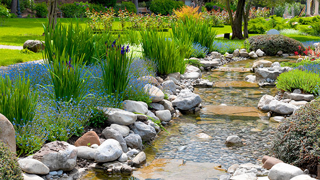 Zen Gardening Online Course for One Person