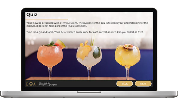 Online Gin School for One Person