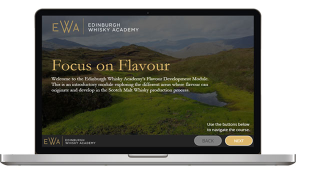 Single Malt Scotch Whisky 'Focus on Flavour' Online Course for One