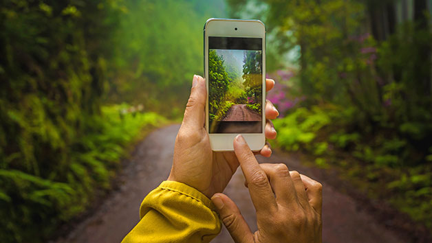 Smartphone Photography Four Week Online Course for One