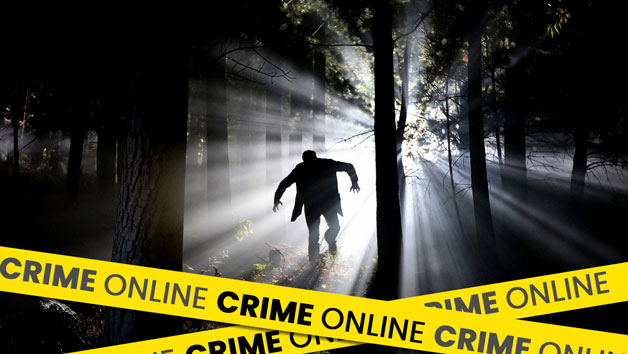 Online Digital Crime Masterclass for One