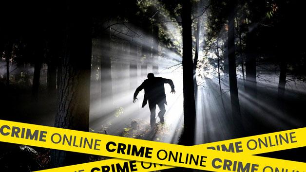 Online Digital Crime Masterclass for One