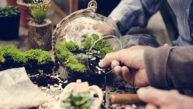 Terrarium Workshop for Two Adults at Porto's Flowers