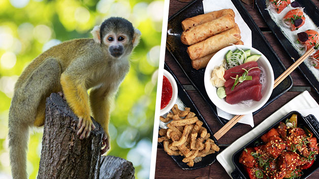 ZSL London Zoo Entry and Six Dish Sharing Menu with Dessert for Two at Inamo