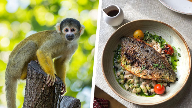Three Course Meal at Gordon Ramsay's York and Albany and London Zoo for Two
