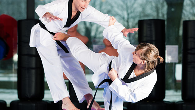 Eight Self Defence Classes with Fighting Arts for One