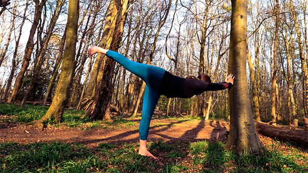 Yoga Day Retreat with BrightonYoga for One