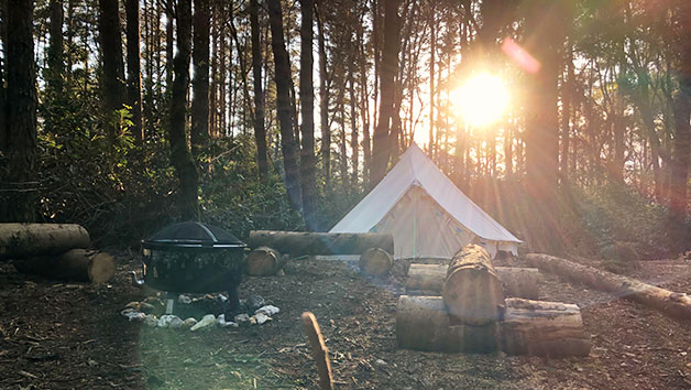 Overnight Glamping Break and Pony Walk for One Person with The Ancient Trails Company