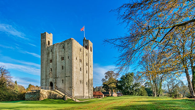 Full Day of Activities at Hedingham Castle with Lunch for One