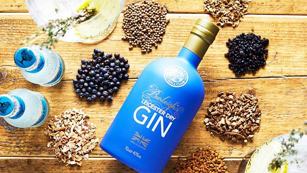 Gin Masterclass at 45 Gin School