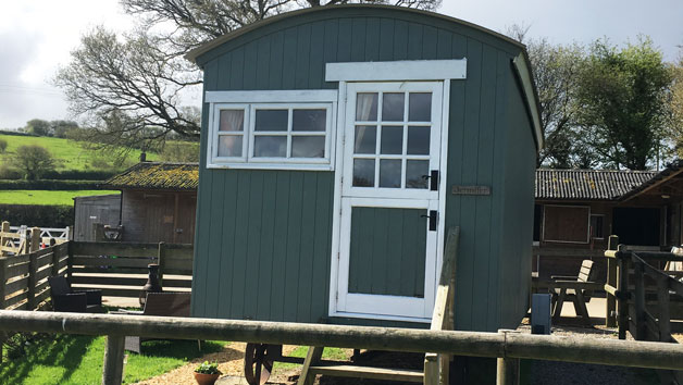 Two Night Shepherd's Hut Break in Devon During Low Season for up to Four People