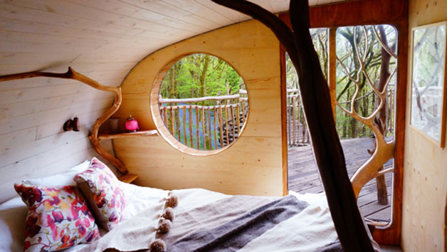 Two Night Family Treehouse Escape, Wales