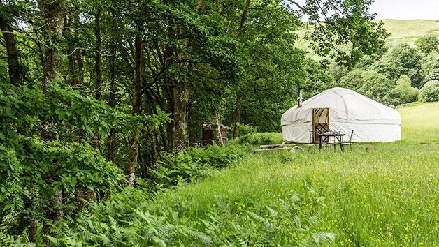 Two Night Family Meadow Yurt Retreat in Wales