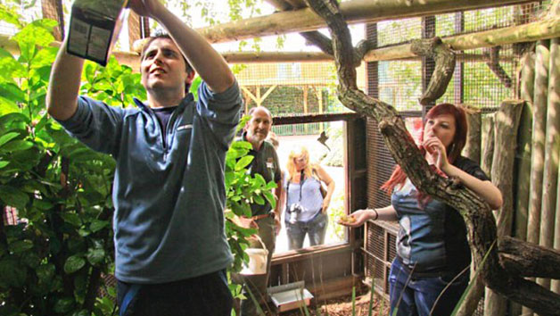Zookeeper Experience for Two at Paradise Wildlife Park