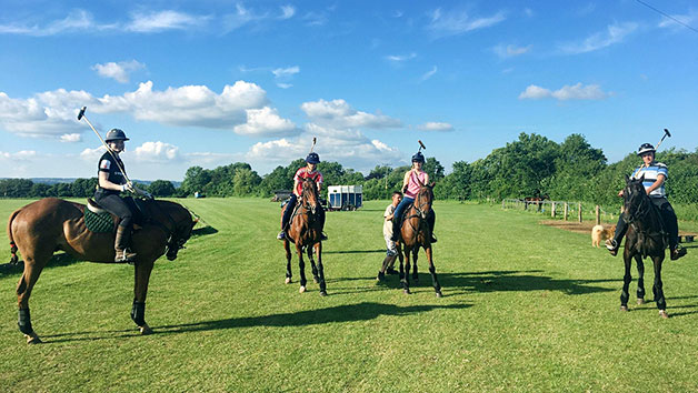 Polo Game with Lunch at Taunton Vale Polo Club for One