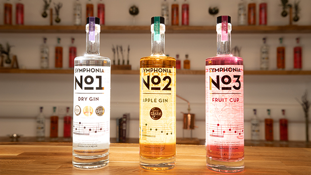Gin Distillery Tour at The Woodlab Distillery for Two