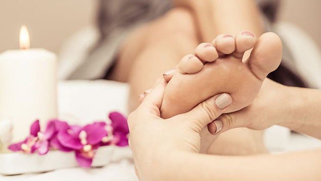 Reflexology Diploma Online Course for One