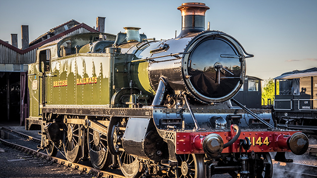 Steam and Diesel Train Day Out for Four at Didcot Railway Centre