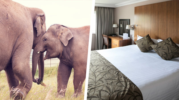 Whipsnade Zoo Adult Entry and Overnight Break at The Aubrey Park Hotel