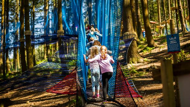 Treetop Nets at Zip World, Wales