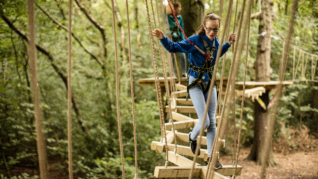 Entry to Zip Trek and Treetop Nets for Two at Treetop Trek