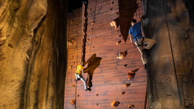 Bear Grylls Big 5 Adventure for One: Indoor Skydiving, Diving, Climbing and More