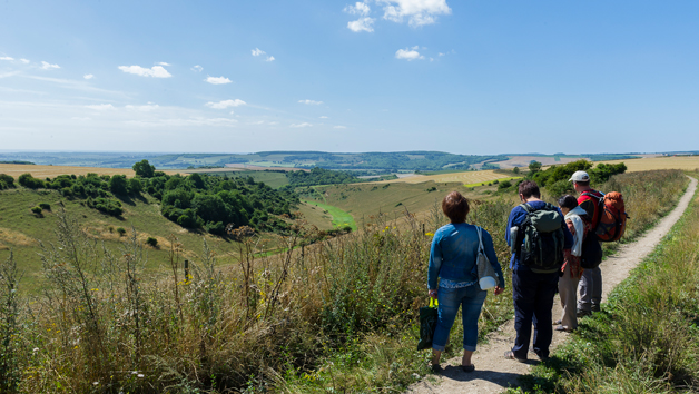 Full Day South Downs Walking Adventure with Pub Lunch and a Glass of Wine for One