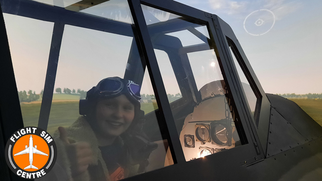 Battle of Britain Flight Simulator Experience for Two