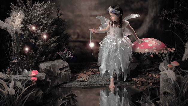 Enchanted Children's Fairy and Elf Photoshoot Experience