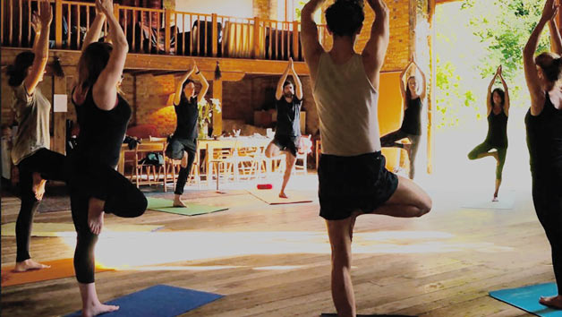 One Day Yoga Retreat Including Lunch and Tea at Yogi Tribe for Two