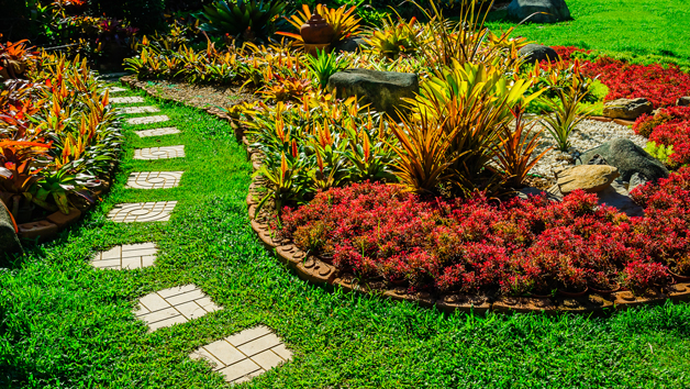 Garden Design and Maintenance Diploma Online Course for One Person