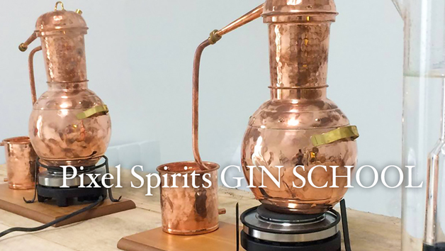 Online Gin Experience with Virtual Tour and Live Tasting from a Master Distiller at Pixel Spirits
